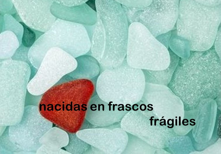 Flyer Nacidos En Frascos Fragiles 24noviembre2018 Frente